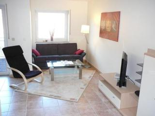 Beautifull comfortable holiday condominium apartment with perfect viev into the mosel valley - Senheim vacation rentals