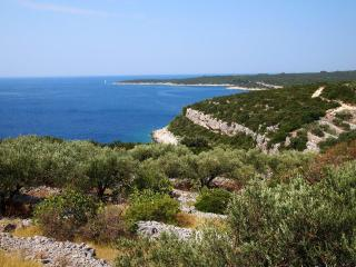 Isolated stone house/vacation house island korcula - Island Korcula vacation rentals