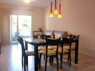 Brand new and huge 2bdr w/balcony & pool Recoleta - Buenos Aires vacation rentals