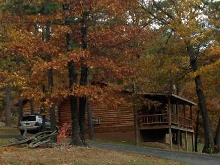 Wild Plum ~ Small Log Cabin #2 - Eureka Springs vacation rentals