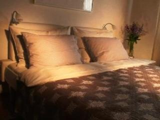 (II) Spacious Studio Apartment in the very centre of Salzburg - Salzburg Land vacation rentals