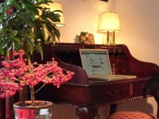 (IV) Perfect Apartment in Perfect Historic Locaction - Salzburg vacation rentals