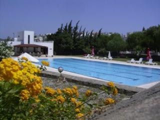 Swimming pool - Villa Datça with swimming pool - Datca - rentals