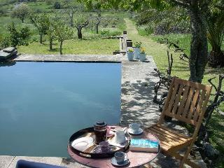 B&B in country house w/vineyard, Serra São Mamede - Alentejo vacation rentals
