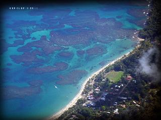 The Palm House of Congo-Bongo Beach and Nature House Rentals - Limon vacation rentals