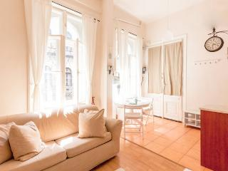 You will love this cosy, lavender home! :) - Budapest vacation rentals