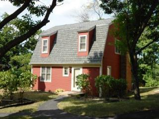 Family Friendly; Pet friendly Settlement Home - Illinois vacation rentals