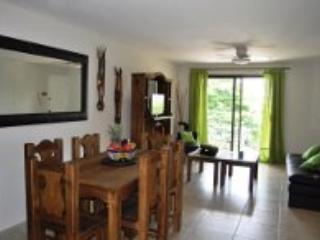 WOW!! Condo steps to beach & 5th Playa Del Carmen - Image 1 - Playa del Carmen - rentals