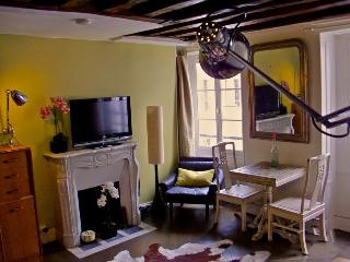 Fine charming Paris studio (390) - Paris vacation rentals