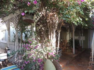 Tropical Ambiance/3 Min to convention cnt/dwn town - San Diego vacation rentals