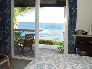 Oceanfront studio in tropical area - Pahoa vacation rentals
