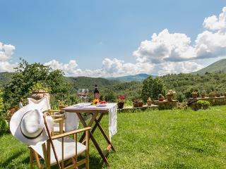 Eco Friendly B&B in the green hills of Florence - Borgo San Lorenzo vacation rentals
