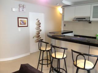 Excellent Property In Center Of Miraflores Fully Furnished - Lima vacation rentals