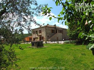 Casina Dei Pini 8 - Farnetella vacation rentals