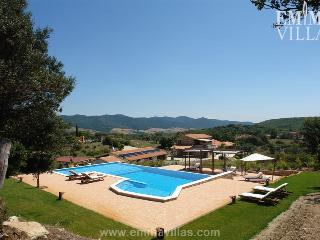 Due Palme 8+2 - Cetona vacation rentals