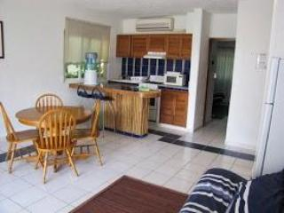 Main area - Best Bargain On the Beach - Puerto Morelos - rentals