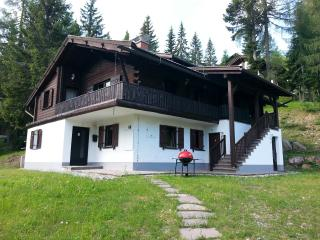 Duplex Apartment in Austrian Alps - Weissensee vacation rentals