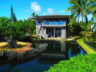 Kapoho Paradise Oceanfront Hm-Aquatic Pond,Champagne pond & Ocean - Puna District vacation rentals