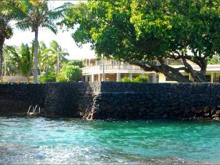10%Off Last Min! Kapoho Oceanside Villa-Snorkel, Fish, & Swim from Oceanfront Property - Puna District vacation rentals