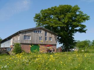 Vacation Apartment in Barkelsby - 969 sqft, ecological, comfortable, friendly (# 4139) - Schleswig vacation rentals