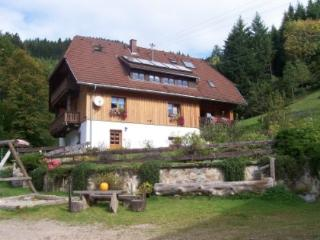 Vacation Apartment in Sankt Märgen - 323 sqft, quiet, loving, expedient (# 4142) - Black Forest vacation rentals