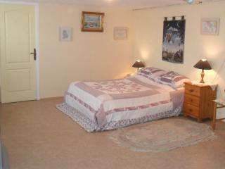 B & B situated in Salles-Lavalette Charente - Salles Lavalette vacation rentals