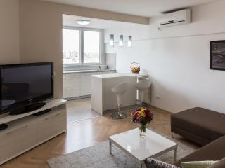 Wonderful Apartment in the Heart of Belgrade - Serbia vacation rentals