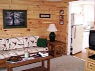 Windham Cabin - Lexington vacation rentals
