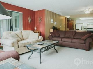 Spacious condo located in Blueberry Hills. 2 bed, 2 bath Greyhawk unit # 312 - British Columbia Mountains vacation rentals
