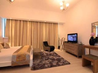 Silverene Tower B (83073) - Dubai vacation rentals