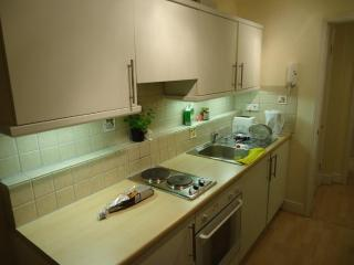 London's Covent Gardens 1 bedroom penthouse - Berlin vacation rentals