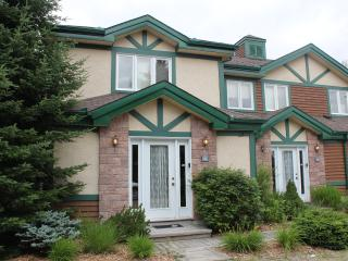 Condo for rent at La Bete Golf,Mt Tremb - Mont Tremblant vacation rentals