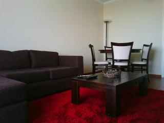 Furnished apartment in Santa Cruz,Colchagua valley - Santa Cruz vacation rentals
