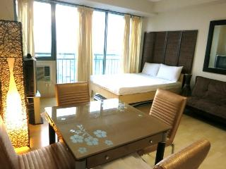 Condo in Center of Metro Manila near MRT Station - National Capital Region vacation rentals