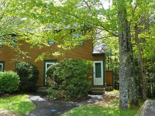 Waterville Valley Vacation Rental Condo in New Hampshire (SCH14M) - Waterville Valley vacation rentals