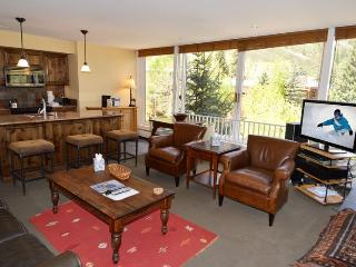 Dur101-A - Aspen vacation rentals