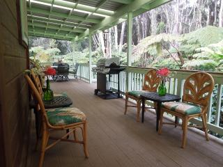 Aloha Sweet Hale- New Hot Tub! - Puna District vacation rentals