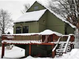 BB 12 -  Froggy's Chalet - Canaan Valley vacation rentals