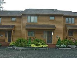 Deerfield 109 - Canaan Valley vacation rentals