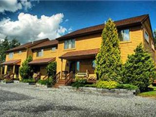 Deerfield 136 - Image 1 - Canaan Valley - rentals