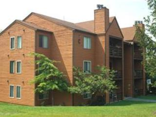 Herzwood Condo  D-103 - West Virginia vacation rentals
