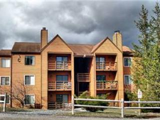 Herzwood Condo  C-202 - Canaan Valley vacation rentals
