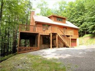 MS 108 -  - 975 Mountainside Rd - Canaan Valley vacation rentals