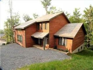 NF 65 - 303 Slopeside Road - Canaan Valley vacation rentals