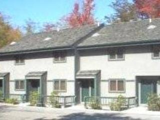 Northwoods B1 - 20 Cross Rd. Ct. - Canaan Valley vacation rentals