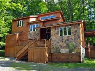 WE 07 -  81 Woods End Court - Canaan Valley vacation rentals