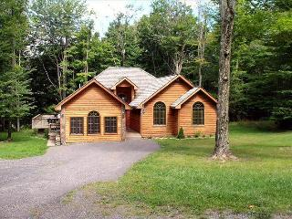 WS 01 -  199 Winterset Dr. - Canaan Valley vacation rentals