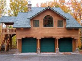 WS 54 -  25 Dew Drop Ct - Canaan Valley vacation rentals