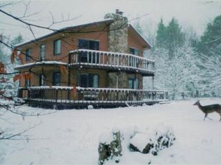 YR 31 -  57 Yoakum Run Rd - Fabulous Winter Rates! - West Virginia vacation rentals
