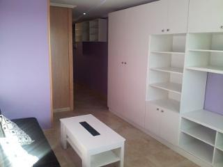 Brand Apartment in Vigo - Galice - Spain (Stone chalet house divided into apartments). Fully furnished - Galicia vacation rentals